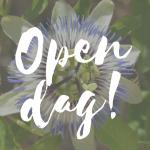 Zaterdag 6 oktober Open Dag Markieza